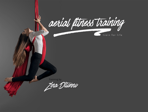 Aerial Instructor Training Certification