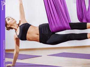 Aerial Silk Training